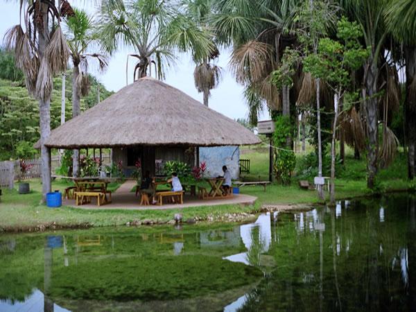 imagens jardim cuiaba:Municípios Turísticos Mato Grosso: Roteiro Turístico de Nobres