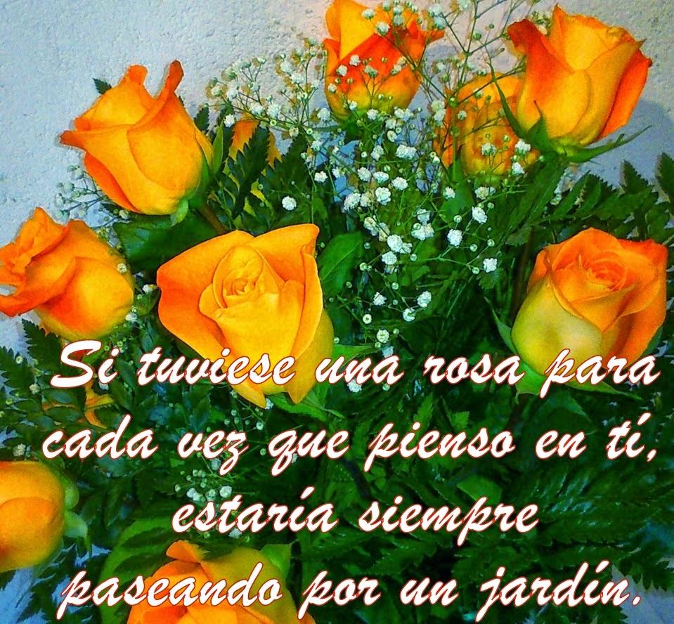 Fotos De Ramos De Flores Con Poemas De Amor - Imágenes de amor con con un ramo de rosas Imagenes de