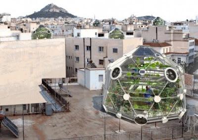 urban farming gardening