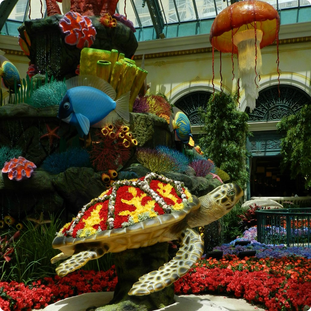 Beau A SEA OF LOVE   SUMMER 2015 AT THE BELLAGIO CONSERVATORY U0026 BOTANICAL GARDENS