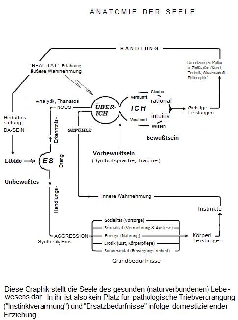 Freuds Instanzen-Model