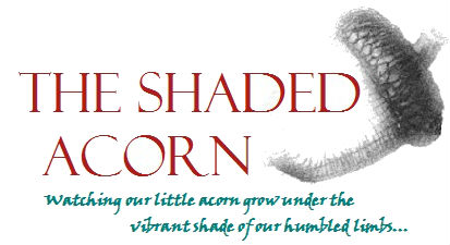 The Shaded Acorn