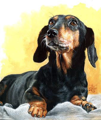 """Chú chó """"siêu cưng"""" của 12 cung hoàng đạo"""