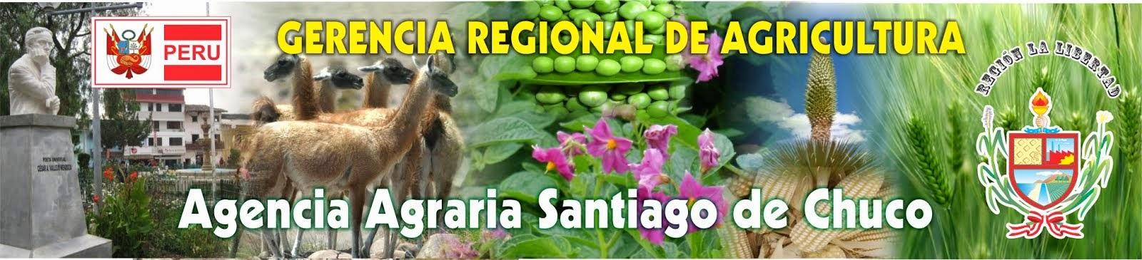 AGENCIA AGRARIA SANTIAGO DE CHUCO