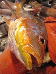 Fish Prices To Remain High