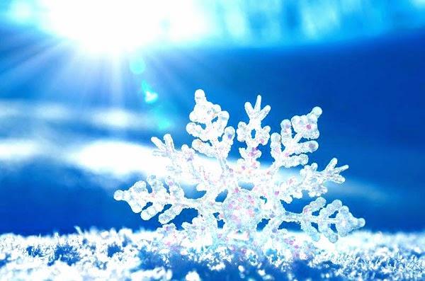 Serpihan Salju Dengan Cermat Dapat Melihat Bahwa Serpihan Salju