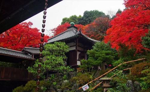 霊鑑寺(れいかんじ)