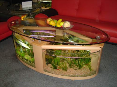 Aqua fanatic unique aquariums for home decoration for Unique fish tank decorations