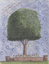 """.É isto o que eu quero fazer: desenhar e """"plantar"""" jardins..."""
