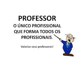 Valorização do Profiissional  em  Educação