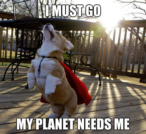 I Must Go My Planet Needs Me (Dog)