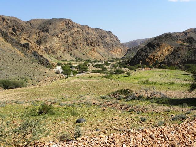 Wadi Al Arbeieen