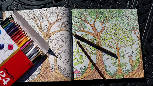 enchanted forest coloring book joanna basford colleen coloured pencils