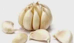 Manfaat bawang putih bagi kesehatan tubuh