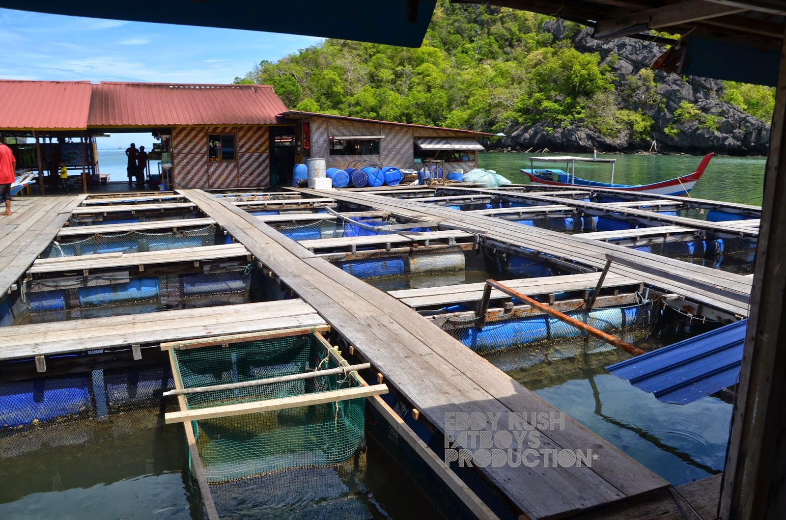 The fish farm at kilim geoforest park langkawi for Illinois fish farms