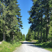 Laufen und Wandern im Erzgebirge