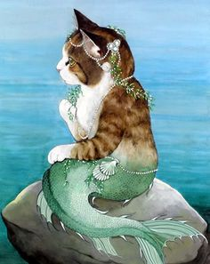 sempre navegante