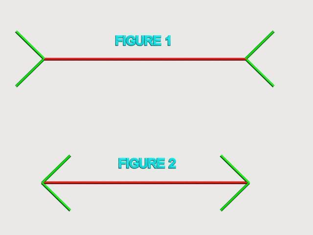 Manash (Subhaditya Edusoft): Optical Illusions : Science of