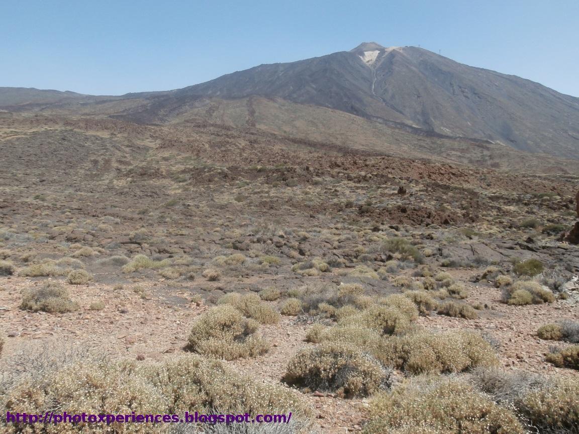 Pico del Teide y Pan de Azúcar