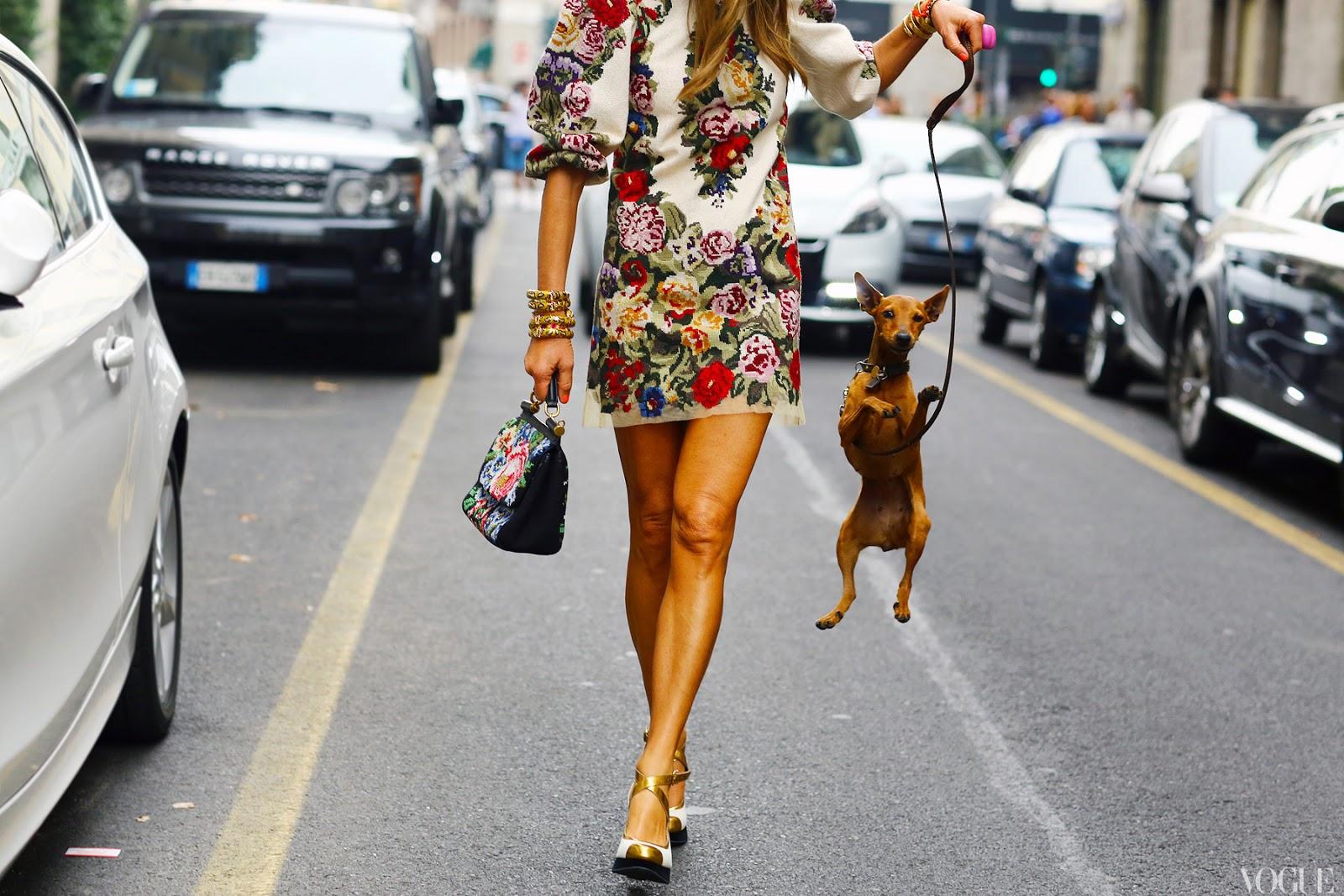 http://3.bp.blogspot.com/-imLQU1XTPh0/UPALRw2NSMI/AAAAAAAASTk/S8b4bZasqN8/s1600/la-modella-mafia-Anna-Dello-Russo-fashion-editor-street-style-Spring-2013-Dolce-Gabbana-dress-and-bag-vogue.jpg