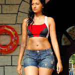 Hamsa Nandini Hot Photos