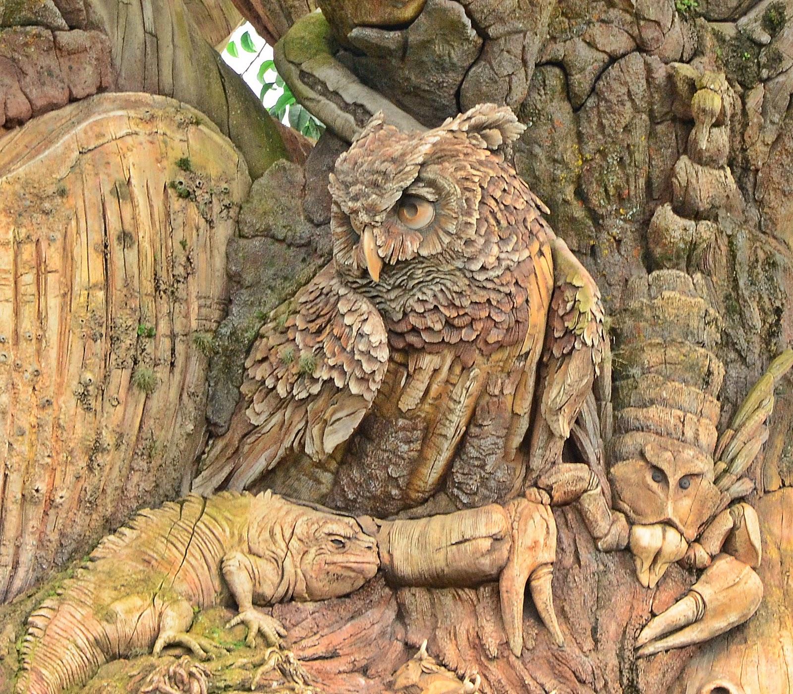 Dina's City Wildlife Adventures: Disney sights at Animal ...