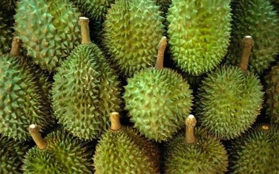 10+buah+paling+aneh+di+dunia,+Durian.jpg