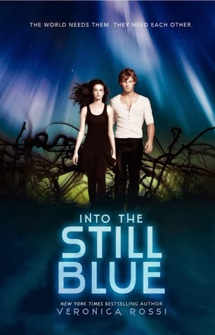 https://www.goodreads.com/book/show/14288998-into-the-still-blue?from_search=true