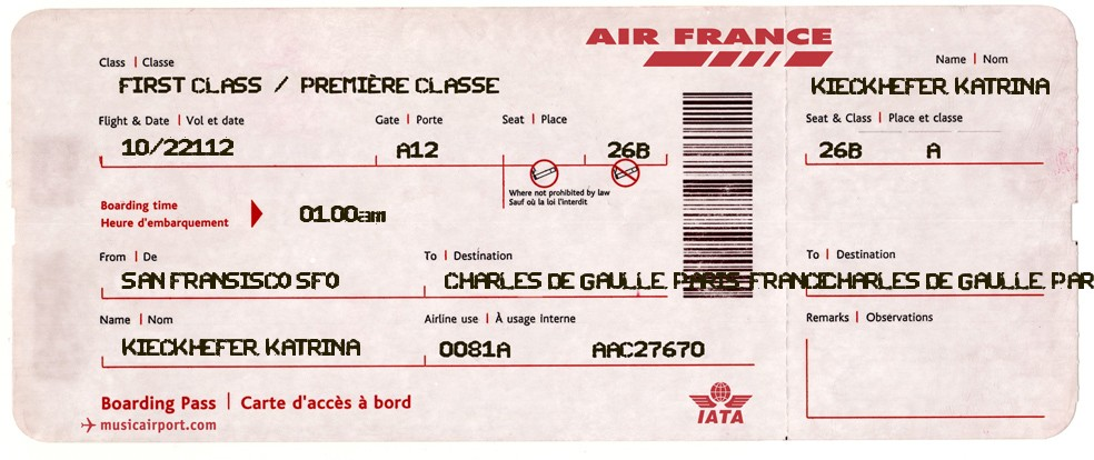 Tam fran ais katrina votre billet d 39 avion pour air france for Interieur d avion air france