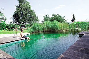 Jardinitis piscinas naturales for Pileta con peces