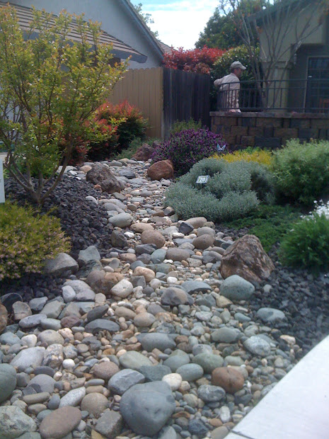 geno's garden design & coaching