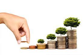 bani, economiseste, monede, crestere, investitie,