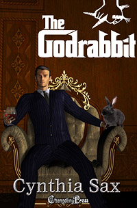 The Godrabbit by Cynthia Sax