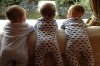 3 bebes juntos