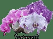 Iminerali website