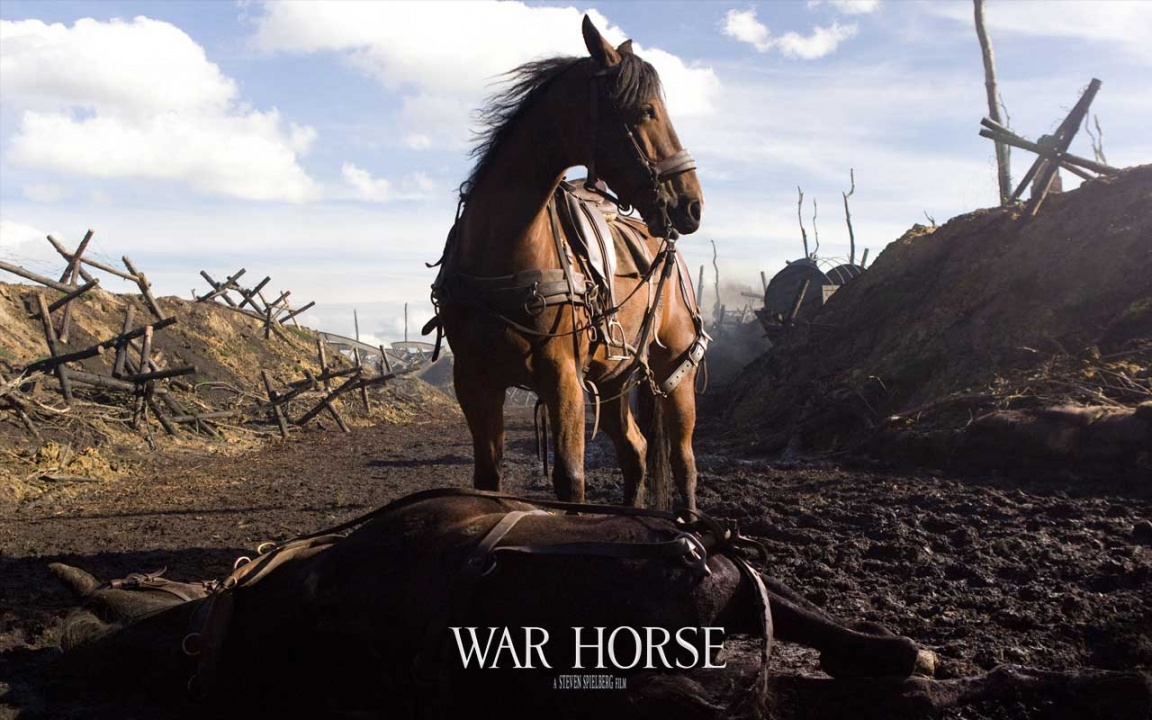 War horse*: environmental film or animal rights plea?