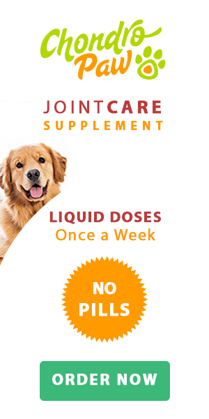 Natural Dog Joint Supplement For Dogs With Arthritis