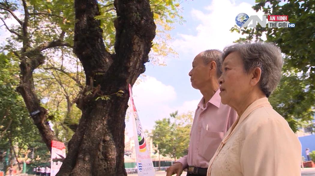 Chùm phim kinh điển về chiến tranh Việt Nam