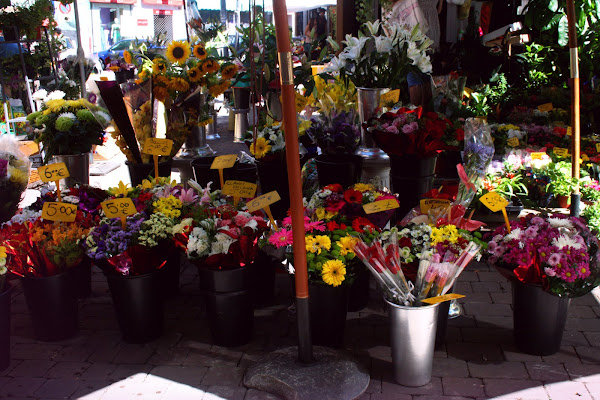 Flowers at Sunday market in La Latina, Madrid, Spain