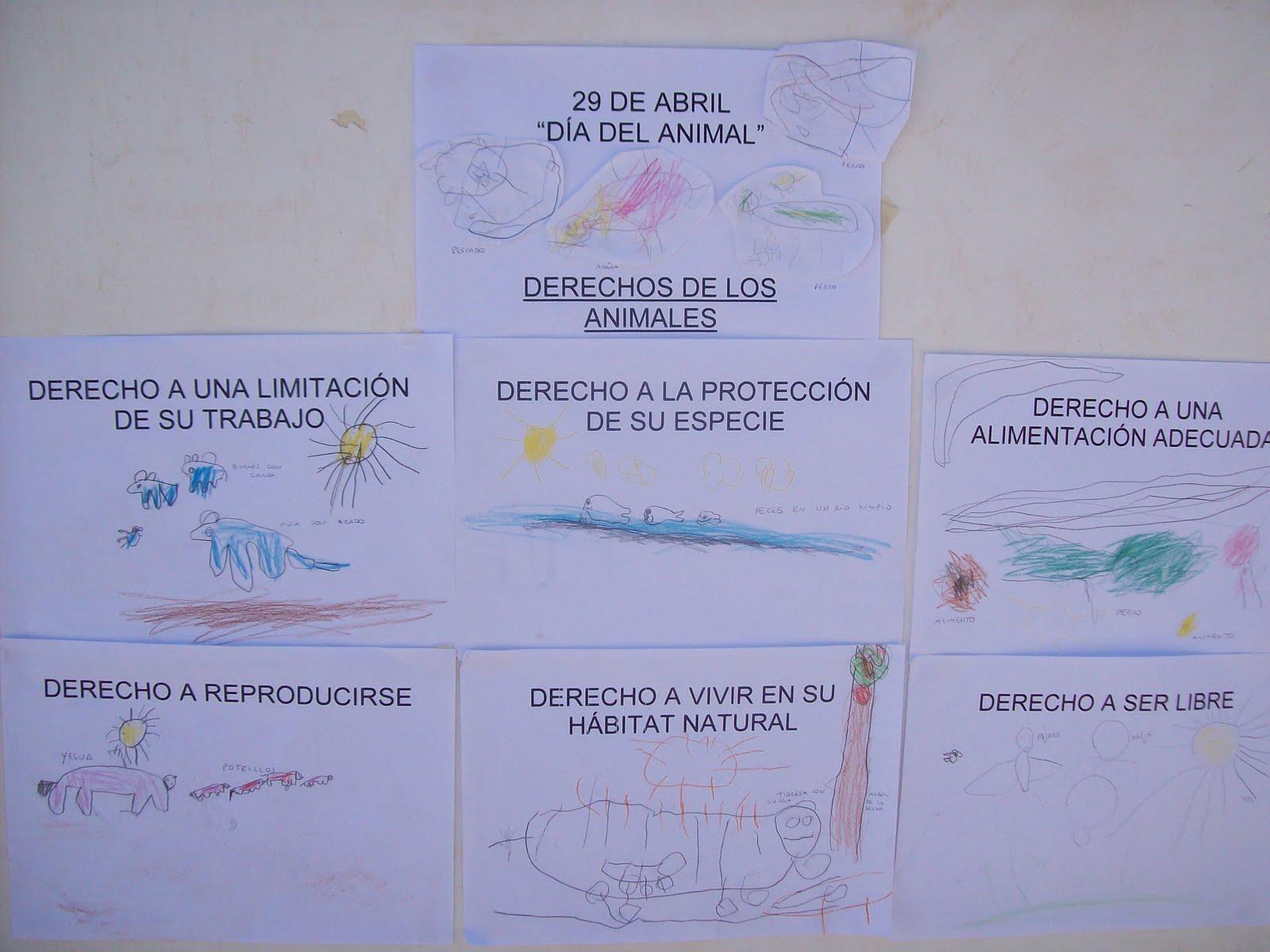 29 de abril: Día del animal. Ideas para su festejo en el Jardín   Mi