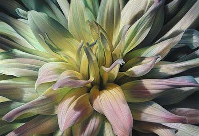 flores-al-oleo-modernos