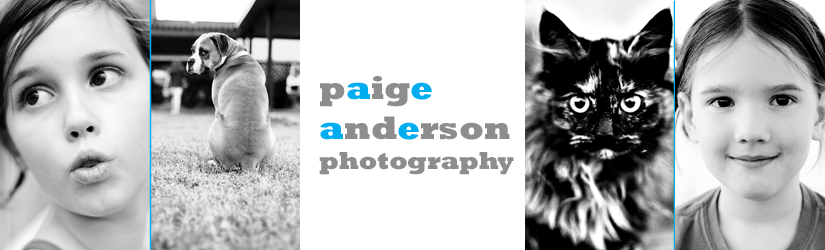 Paige Anderson Photography