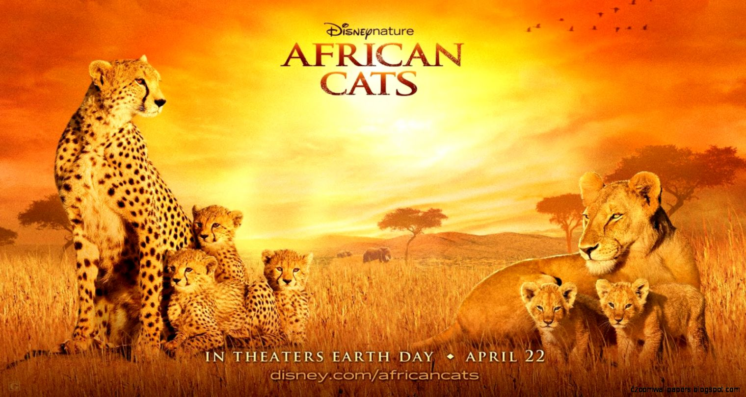 African Cats 2011 Download Movie Full Free