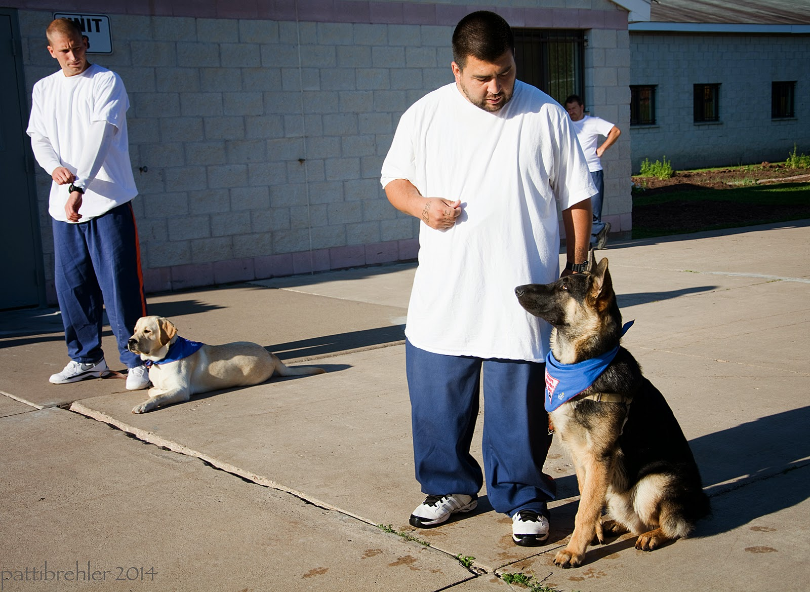 Two men stand facing left with their puppies at their left side, both are wearing blue prison pants and white t-shirts. The man on the far left has his hands crossed in front of him; his yellow lab puppy is lying on the cement next to him, and wearing the blue Future Leader Dog bandana. The man on the right, closest to the camera is holding his right arm at his waist and looking down at his german shepherd puppy, which is sitting on his left side. The german shepherd is wearing the blue Future Leader Dog bandana and is looking at the man's right hand. The man's left hand is at his side holding the dog's leash. The men are in bright sunshine outside of a white brick building. A man is standing in a doorway in the far distance behind the man on the right.