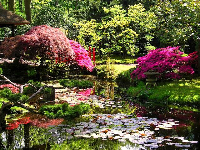 Japanese zen garden japanese garden the hague for Giardini giapponesi