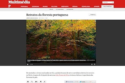 Nova galeria multimédia sobre Floresta Portuguesa no site do jornal PÚBLICO