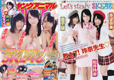 Young Animal 2011 No.22 SKE48 SPECIAL