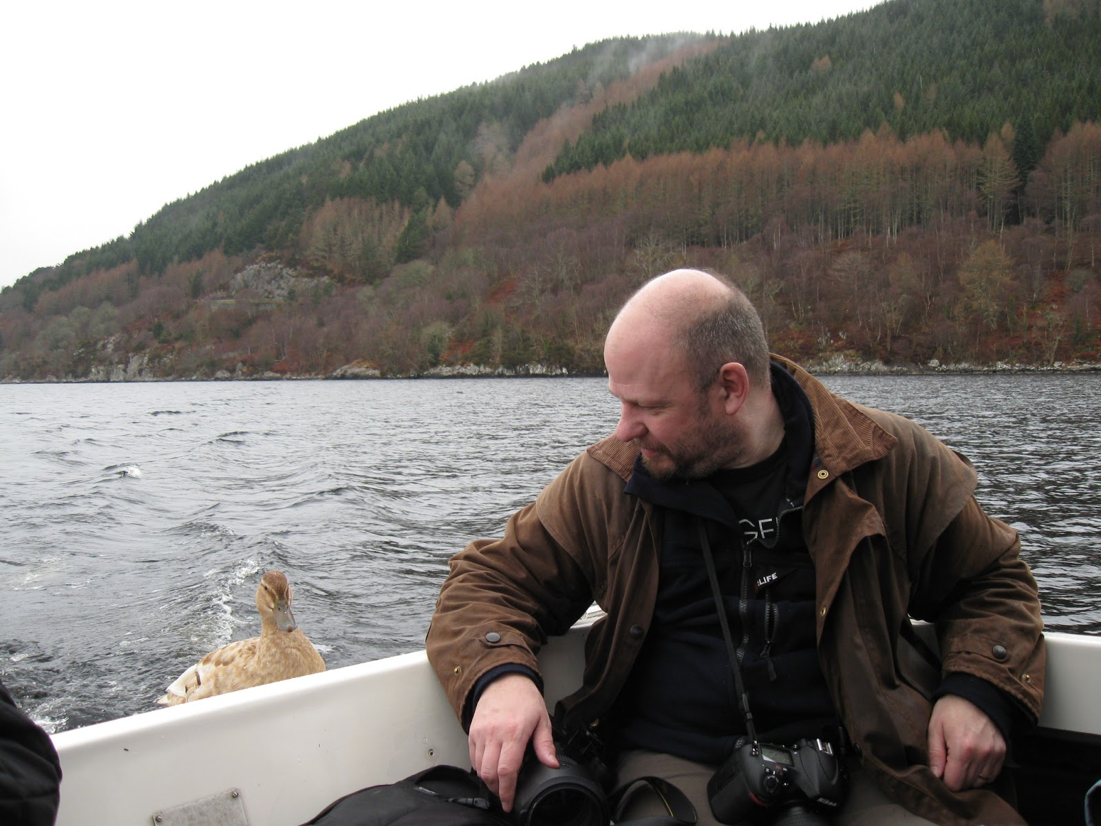 Loch Ness Monster Sightings 2014 So the cake was eaten,