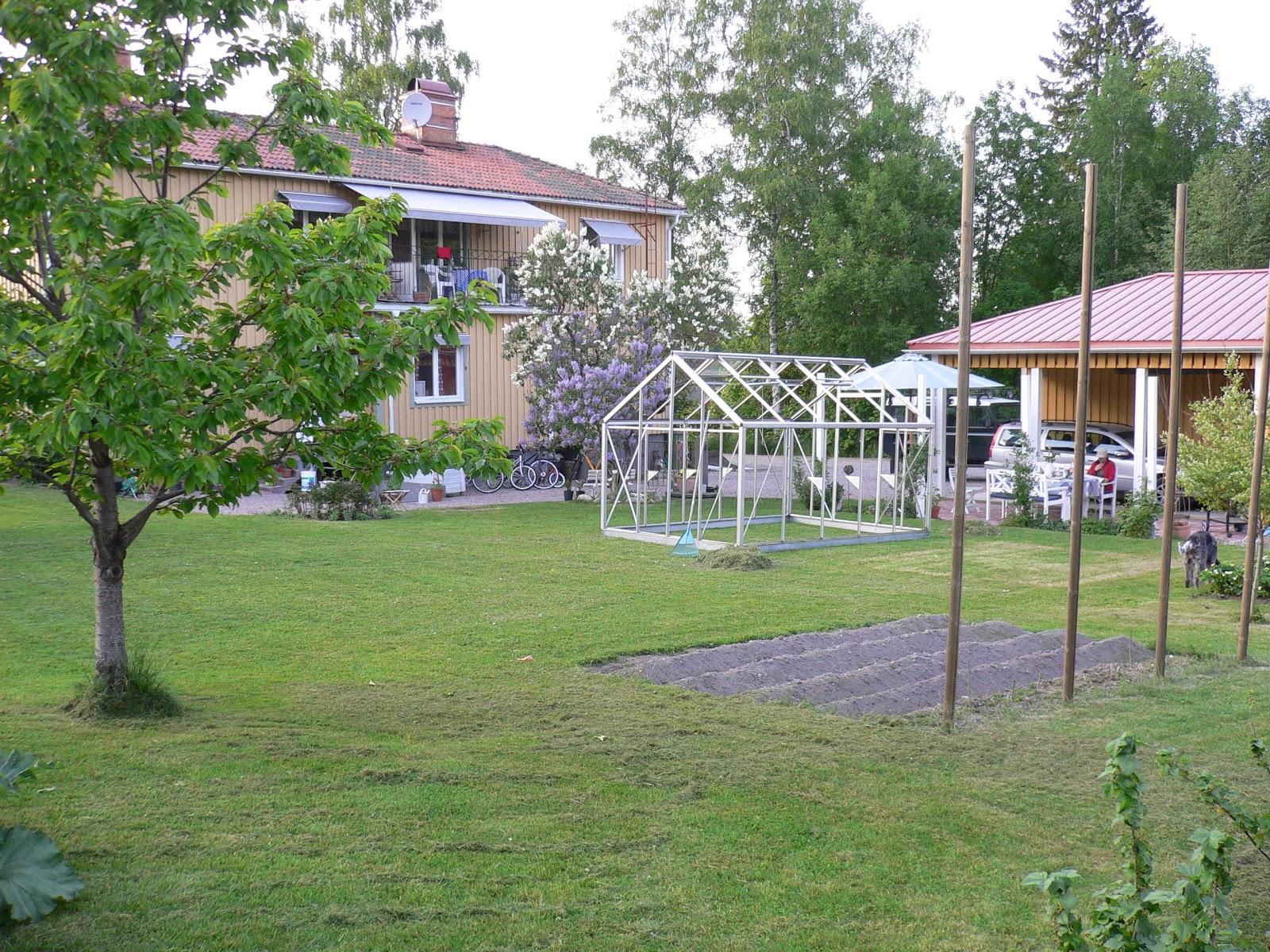 Karina marias trädgård: en underbar första dag av en ledig långhelg.