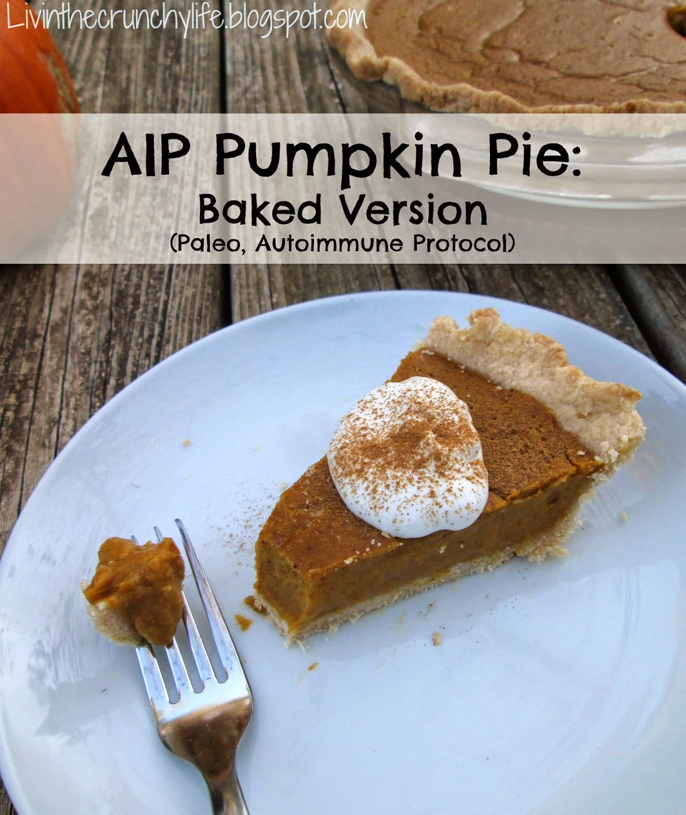 Pie and Crust: Baked Version (Gluten Free, Dairy Free, Nut Free, Egg ...